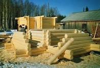 Свойства разных пород древесины при строительстве дома