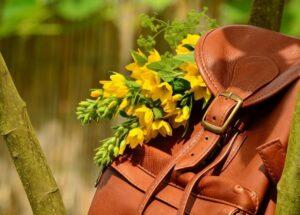 Преимущества интернет-магазина рюкзаков